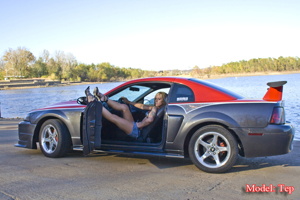 Click image for larger version  Name:03 mustang 002.png Views:610 Size:337.8 KB ID:50093