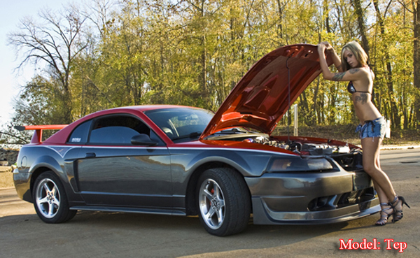 Click image for larger version  Name:03 mustang 003.png Views:653 Size:421.5 KB ID:50092