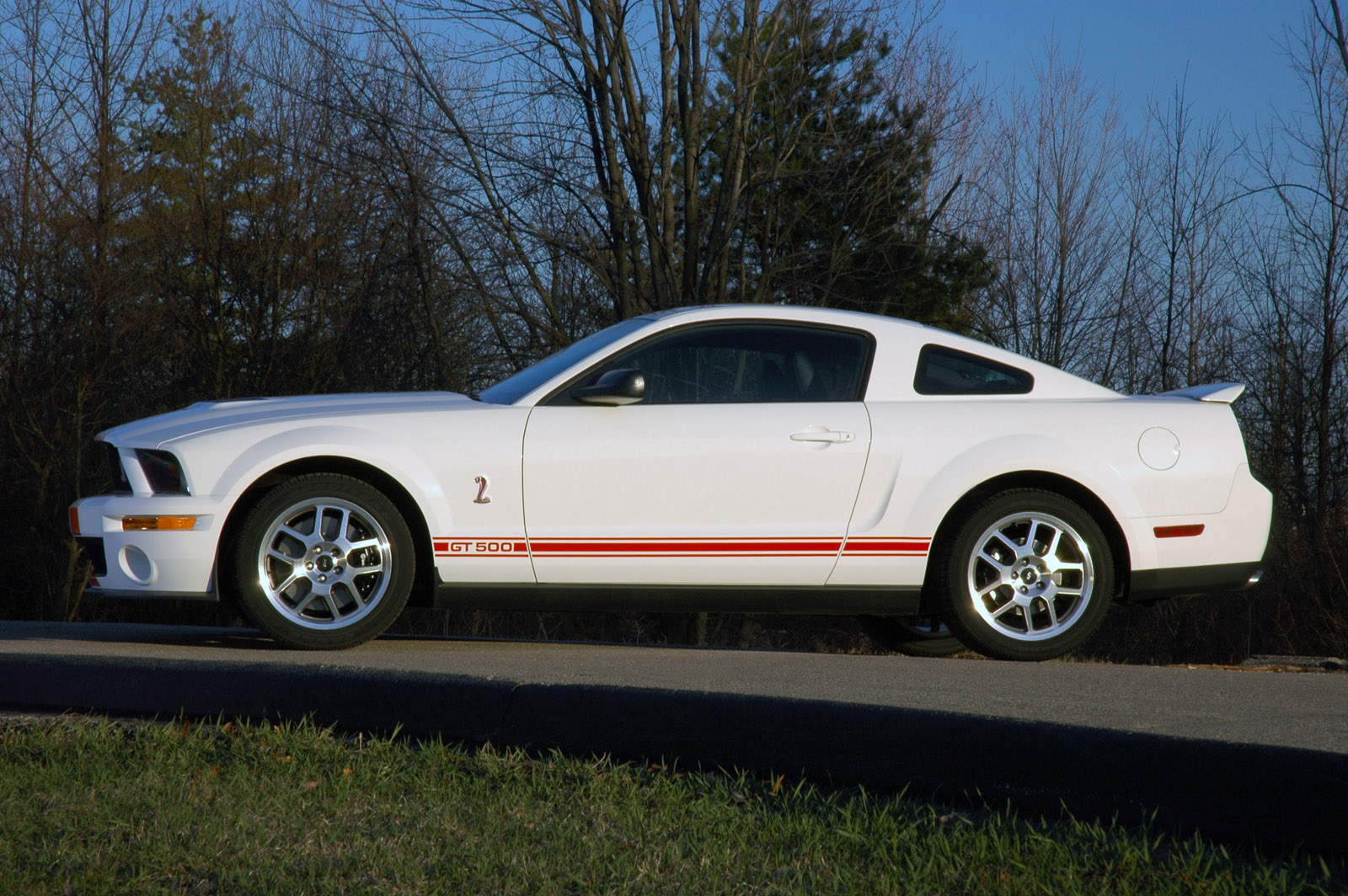 Click image for larger version  Name:07GT500_wht_rs_04.jpg Views:684 Size:480.1 KB ID:17099