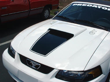 Click Image For Larger Version Name 1999 2003 Mustang Square Nose With Pinstripe And