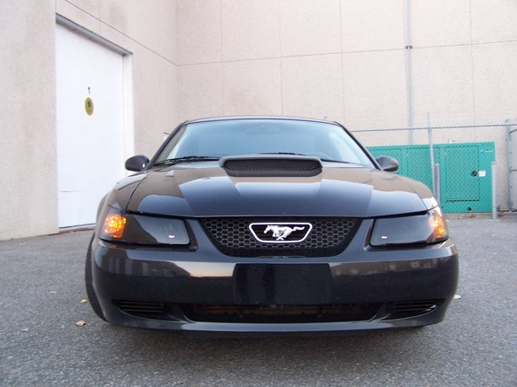 Click image for larger version  Name:2000-V6-Mustang_Photo_15.jpg Views:633 Size:55.0 KB ID:158168