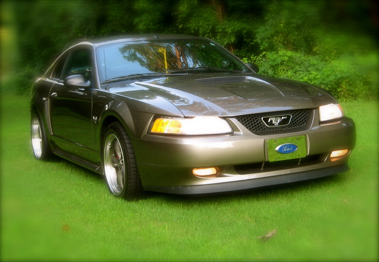 Click image for larger version  Name:2002 GT Front.jpg Views:309 Size:260.3 KB ID:20411
