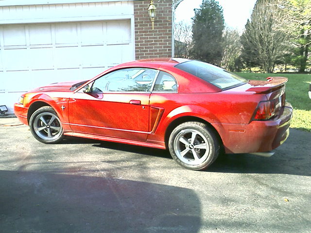 Click image for larger version  Name:2003 mustang1.jpg Views:39 Size:320.3 KB ID:18384