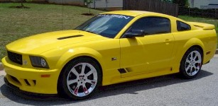 Click image for larger version  Name:2006saleen.jpeg Views:222 Size:18.0 KB ID:74542