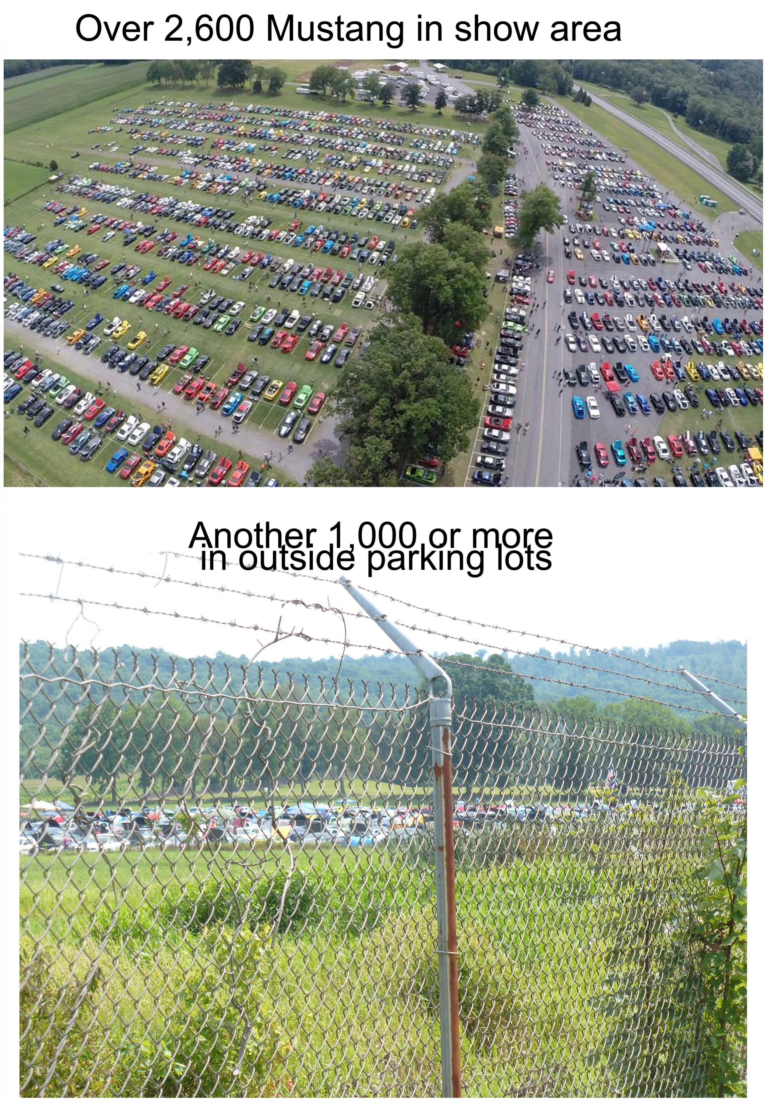 Click image for larger version  Name:Ariel and fence photo.jpg Views:49 Size:1.82 MB ID:188519