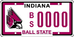 Click image for larger version  Name:BallState.jpg Views:165 Size:43.7 KB ID:15731