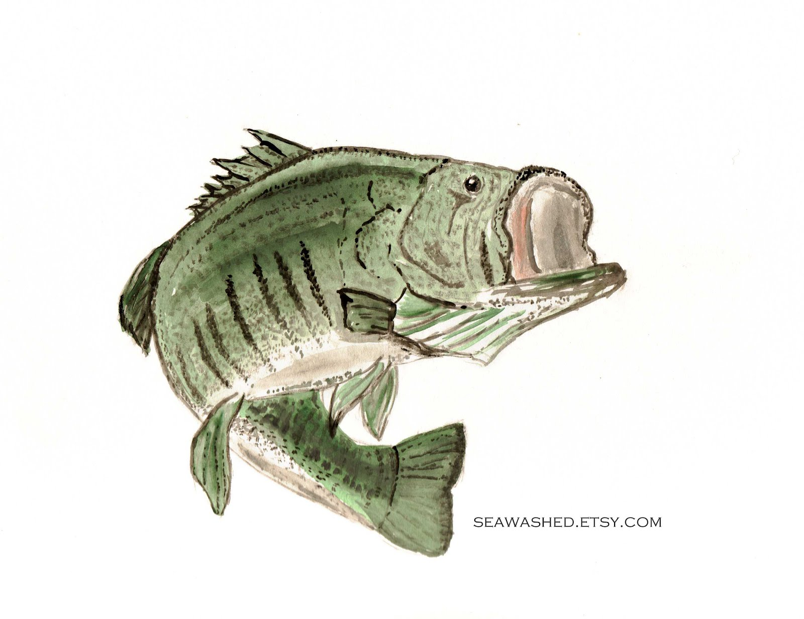 Click image for larger version  Name:bass deep green sea wm.jpg Views:864 Size:205.7 KB ID:131780