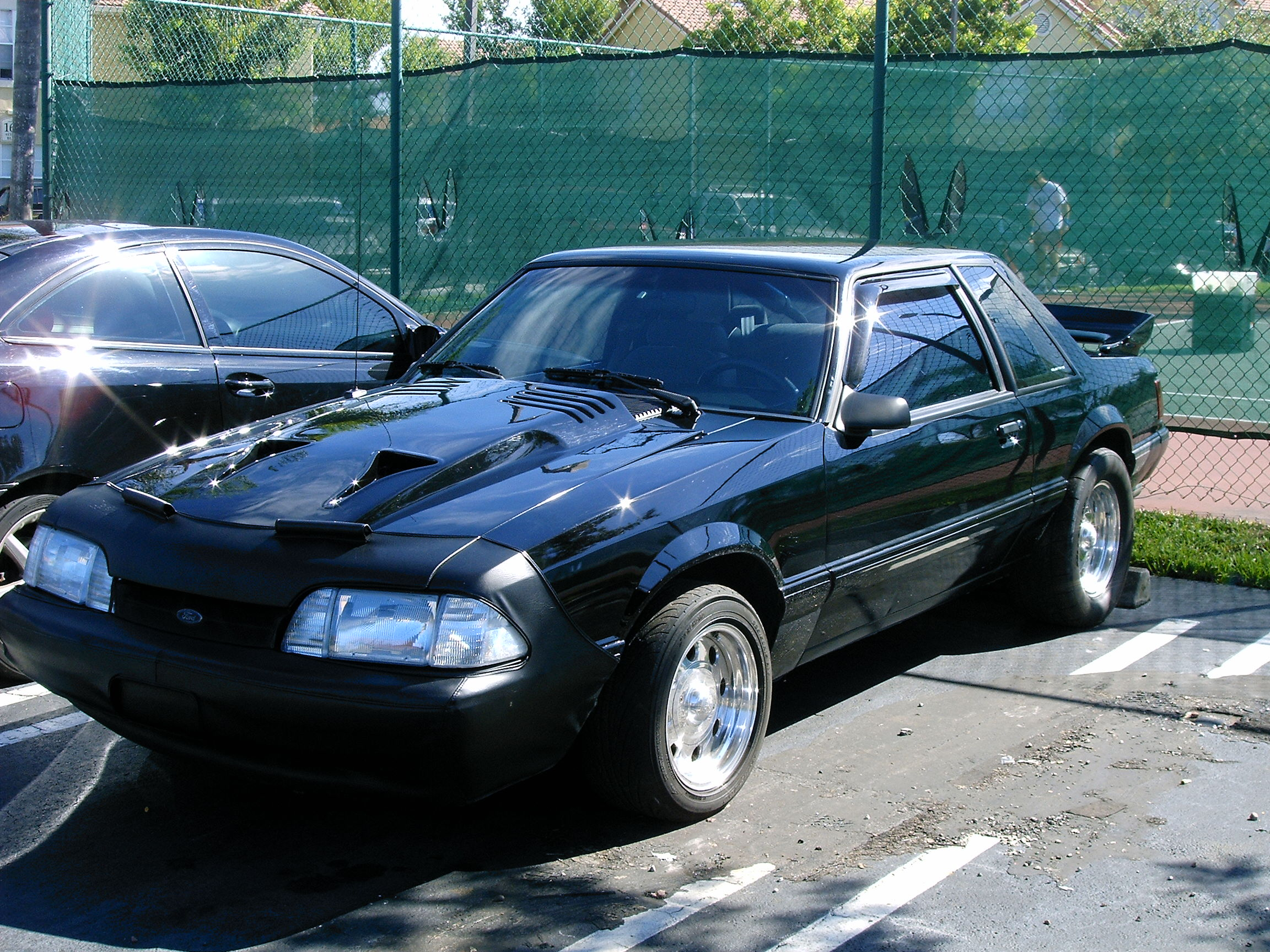 Click image for larger version  Name:black beast 004.jpg Views:236 Size:1.42 MB ID:14340