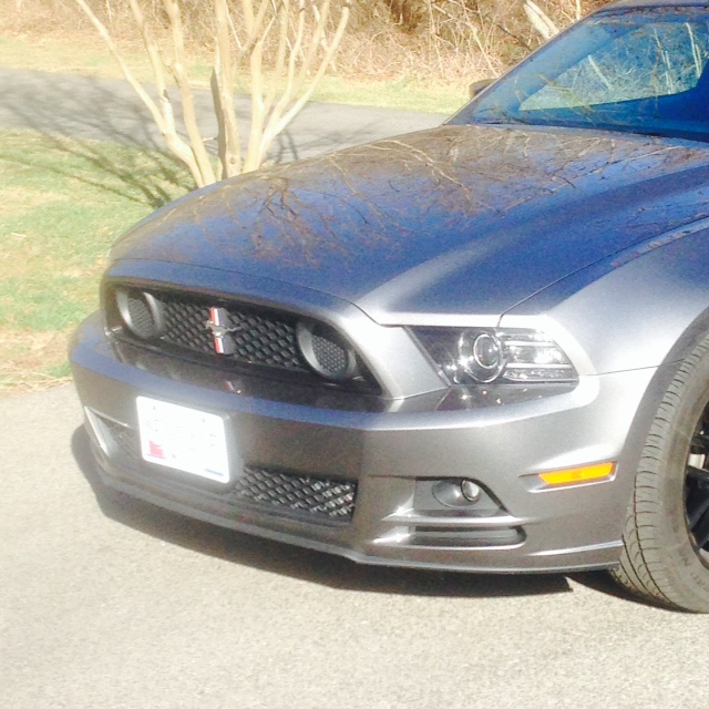 Click image for larger version  Name:Boss 302 Grille.jpg Views:184 Size:174.8 KB ID:143239