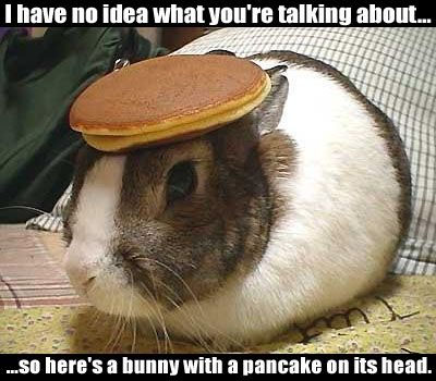 Click image for larger version  Name:bunny.jpg Views:465 Size:70.0 KB ID:10664