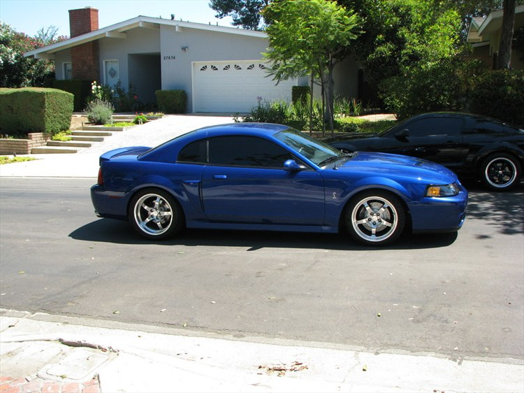 HELP ME pick out new rims for the Cobra! - Mustang Evolution