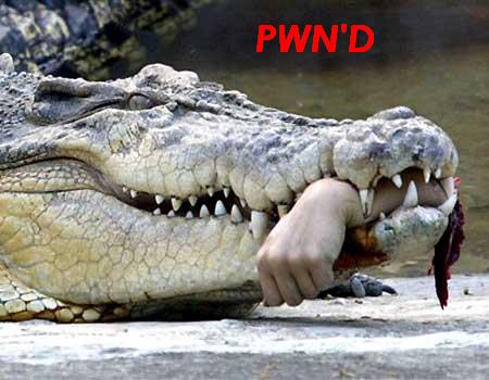 Click image for larger version  Name:croc.jpg Views:161 Size:32.5 KB ID:17053