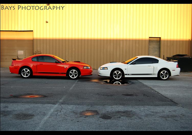 Click image for larger version  Name:DSC_0461.jpg Views:129 Size:62.2 KB ID:20541