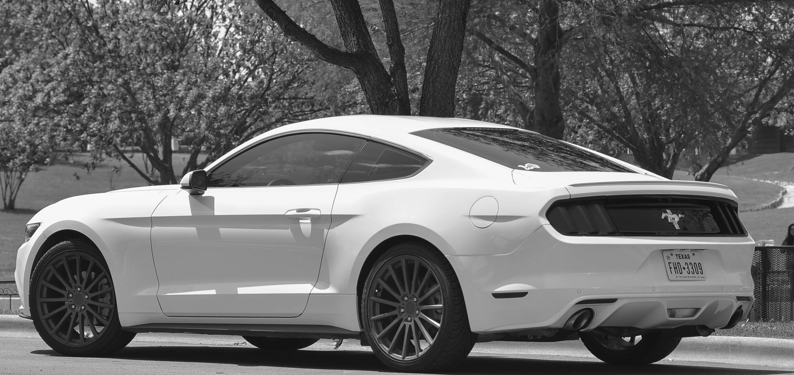 Click image for larger version name dsp2015mustang85mm 1 jpg views 7129 size