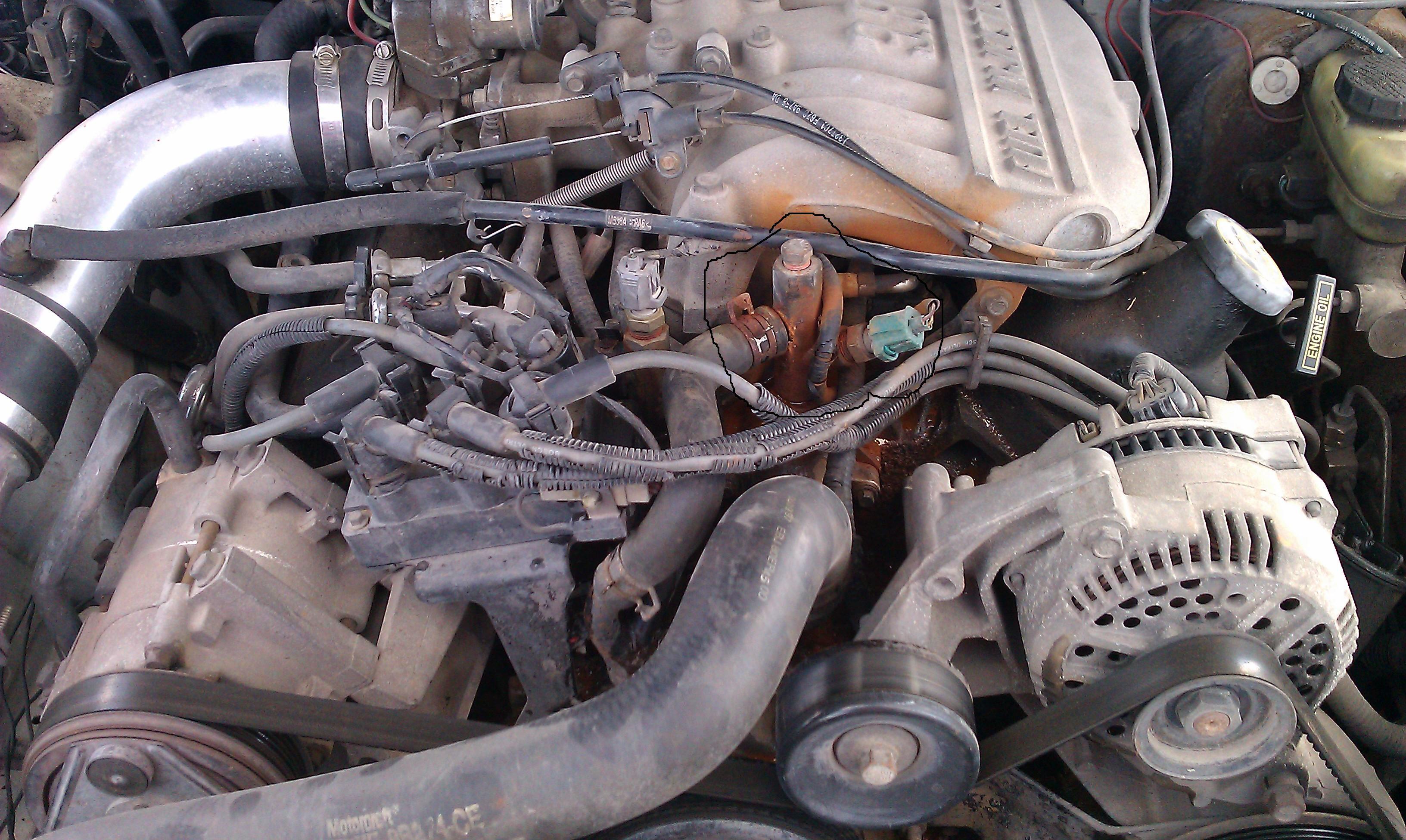 Coolant Temp. Sending Unit Trouble!!! | Mustang Evolution Forum | 1998 Mustang V6 Engine Diagram |  | Mustang Evolution Forum