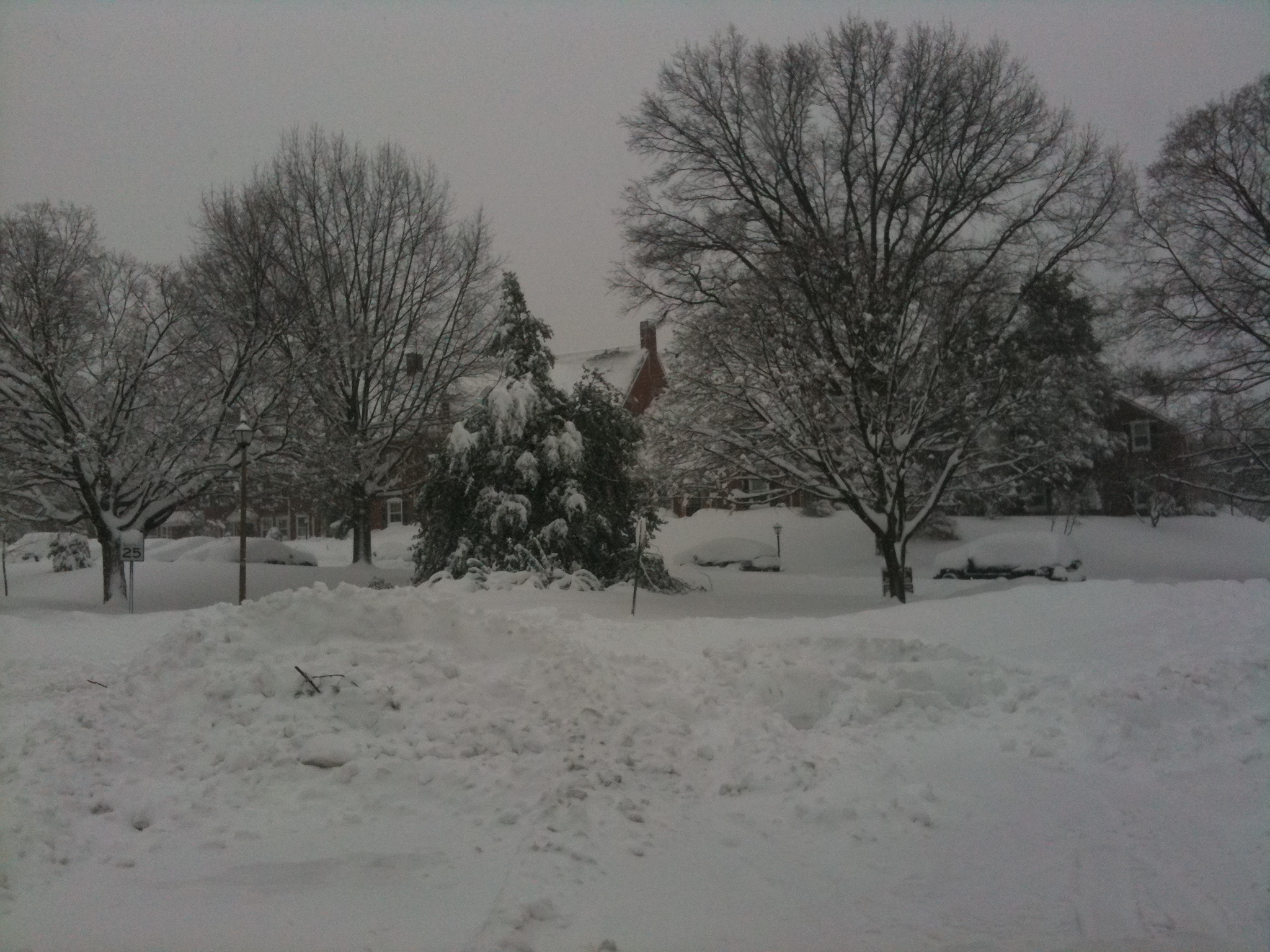 Click image for larger version  Name:Feb2010Snowstorm 159.JPG Views:63 Size:1.15 MB ID:21443