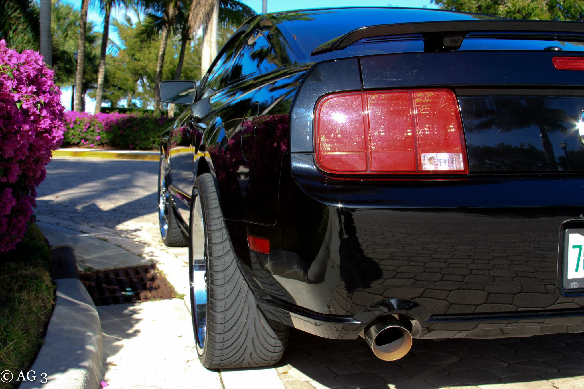 Click image for larger version  Name:FORIST'S MUSTANG12.jpg Views:2222 Size:350.1 KB ID:69889