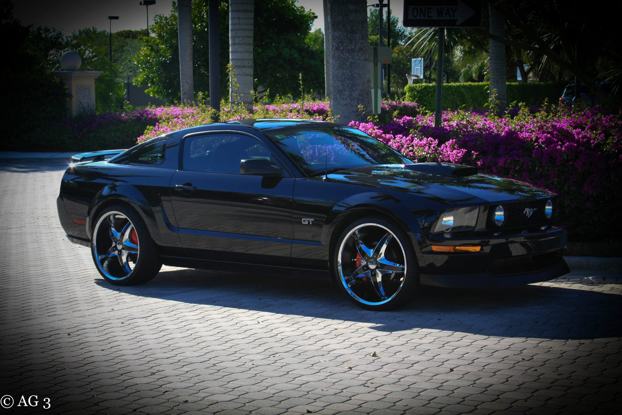 Click image for larger version  Name:FORIST'S MUSTANG16.jpg Views:200 Size:464.0 KB ID:45000