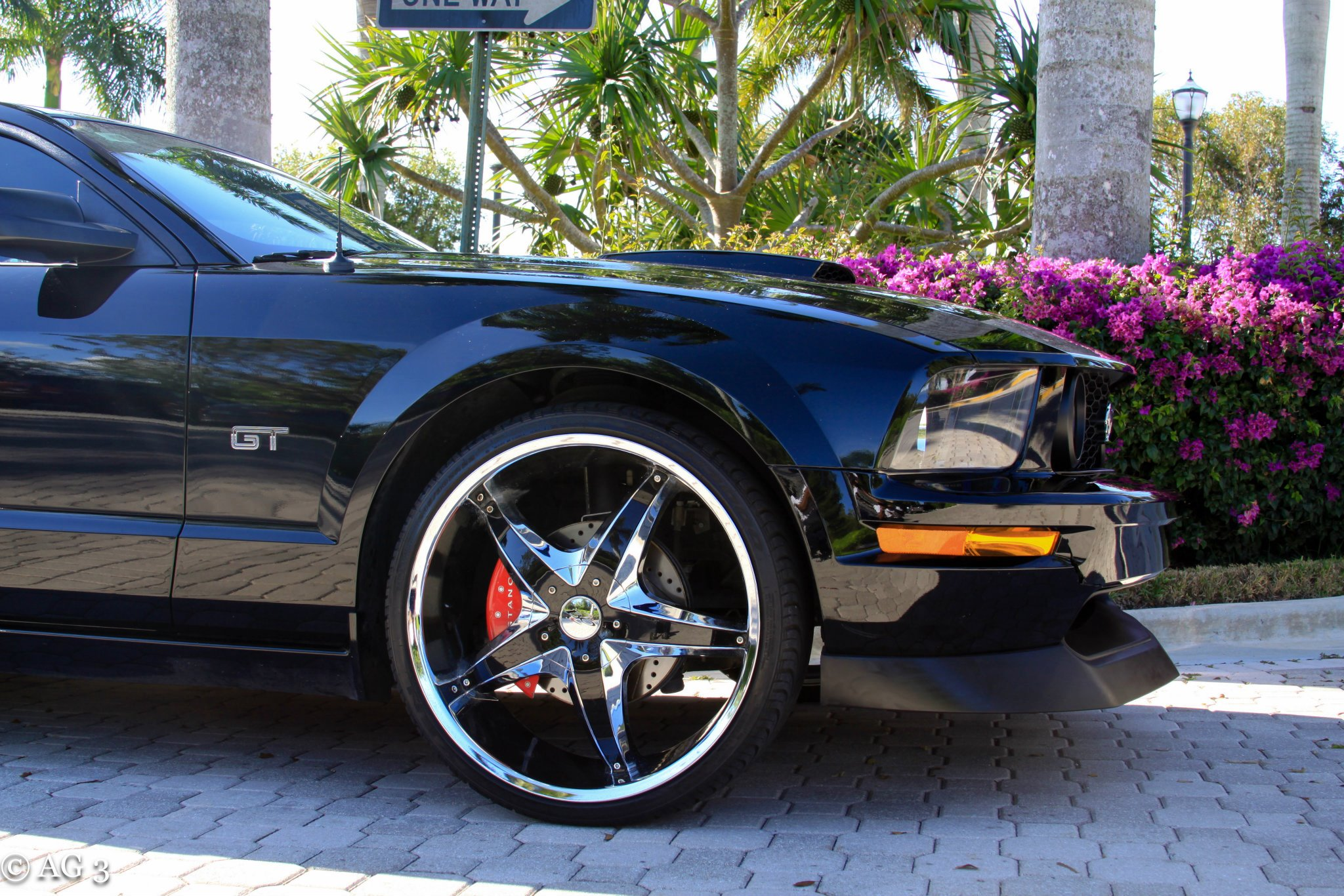 Click image for larger version  Name:FORIST'S MUSTANG3.jpg Views:121 Size:581.4 KB ID:128976