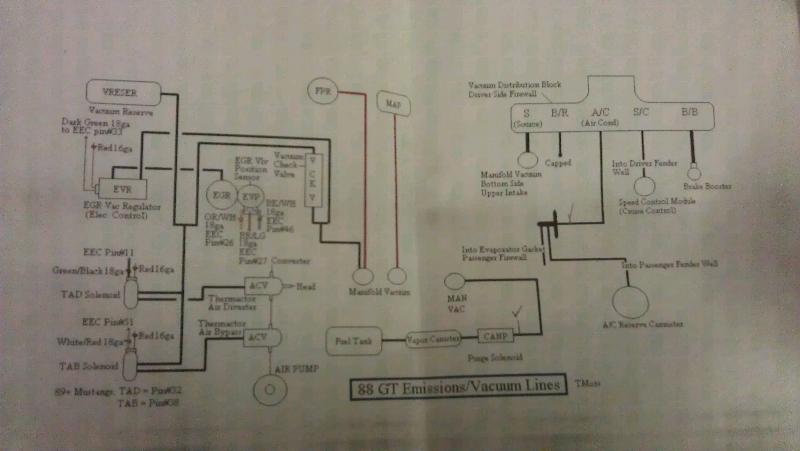 Vacuum routing diagram - Mustang Evolution