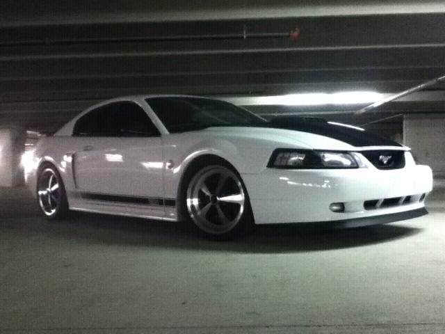 2003 White Mustang Mach1 Prep for Sale Detail GT Garry Dean ...