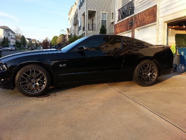 Lowering My Stang Mustang Evolution