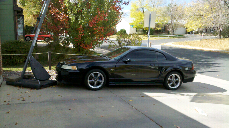 Raceland Coilovers Mustang