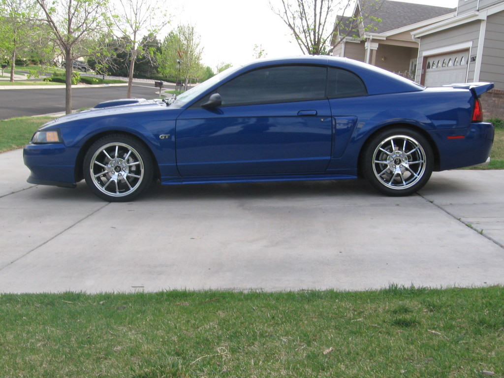 Help Me Pick Out New Rims For The Cobra Mustang Evolution