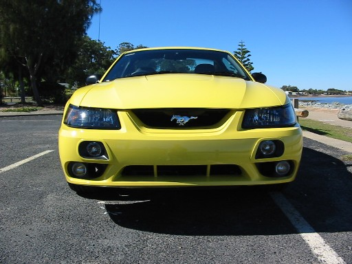 Front End Photo Of 2002 Cobra Mustang Evolution