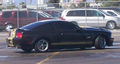 Click image for larger version  Name:hertz_mustang.jpg Views:286 Size:21.7 KB ID:12705