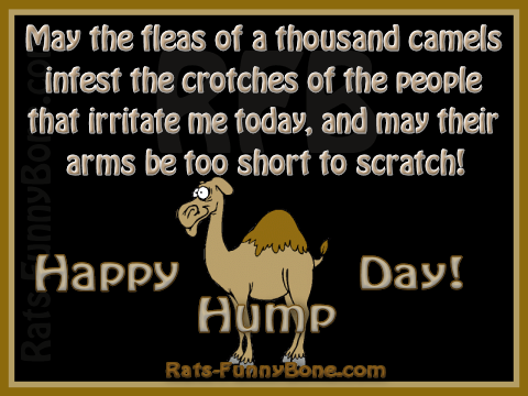 Click image for larger version  Name:Hump-Day.png Views:115 Size:98.7 KB ID:127485