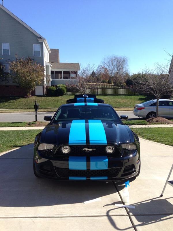 New Grabber Blue stripe on black 2013 50  Mustang Evolution