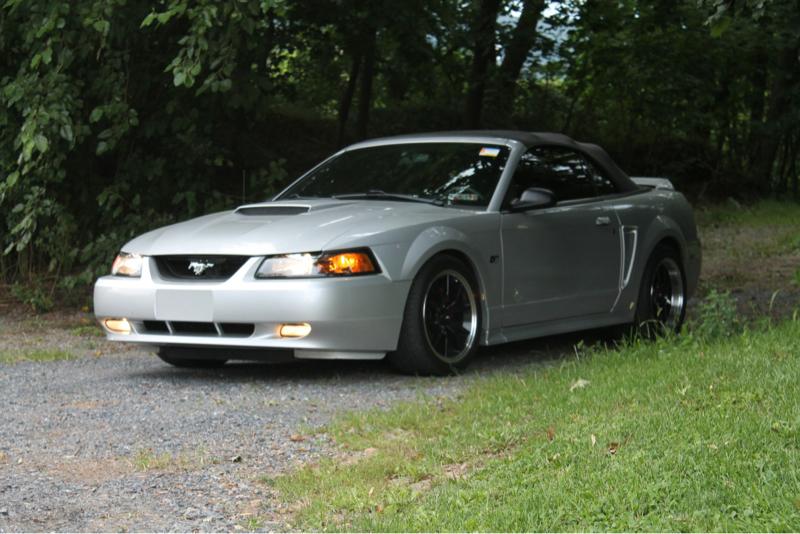 Lowering Question Follow Up Shocks Struts Mustang