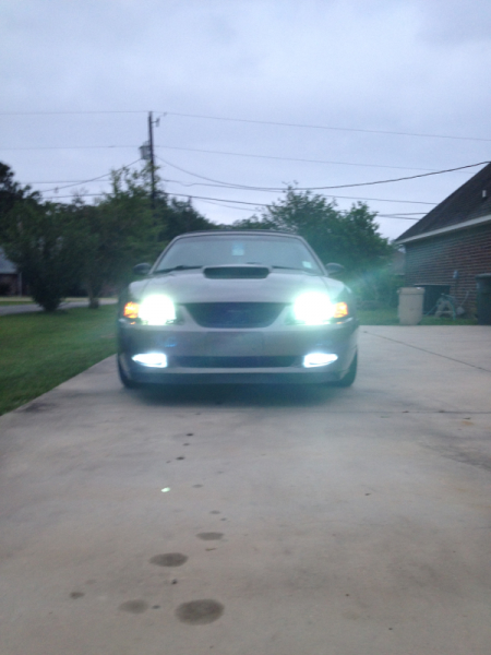 Mustang Terminator Headlights