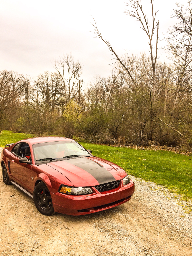 Click image for larger version  Name:ImageUploadedByMustang Evolution1401077313.778973.jpg Views:113 Size:1.20 MB ID:157875