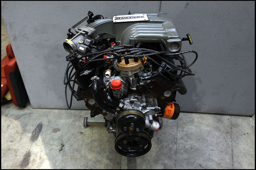 my official 5 0 engine swap thread mustang evolution rh mustangevolution com Mustang 302 V8 Engine Specs Ford Mustang Engine