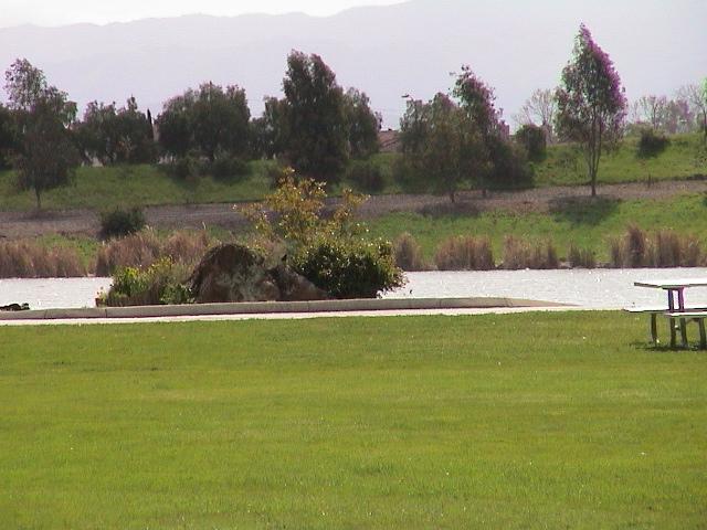 Click image for larger version  Name:Lake Cunningham, San Jose, Ca..JPG Views:99 Size:166.6 KB ID:265