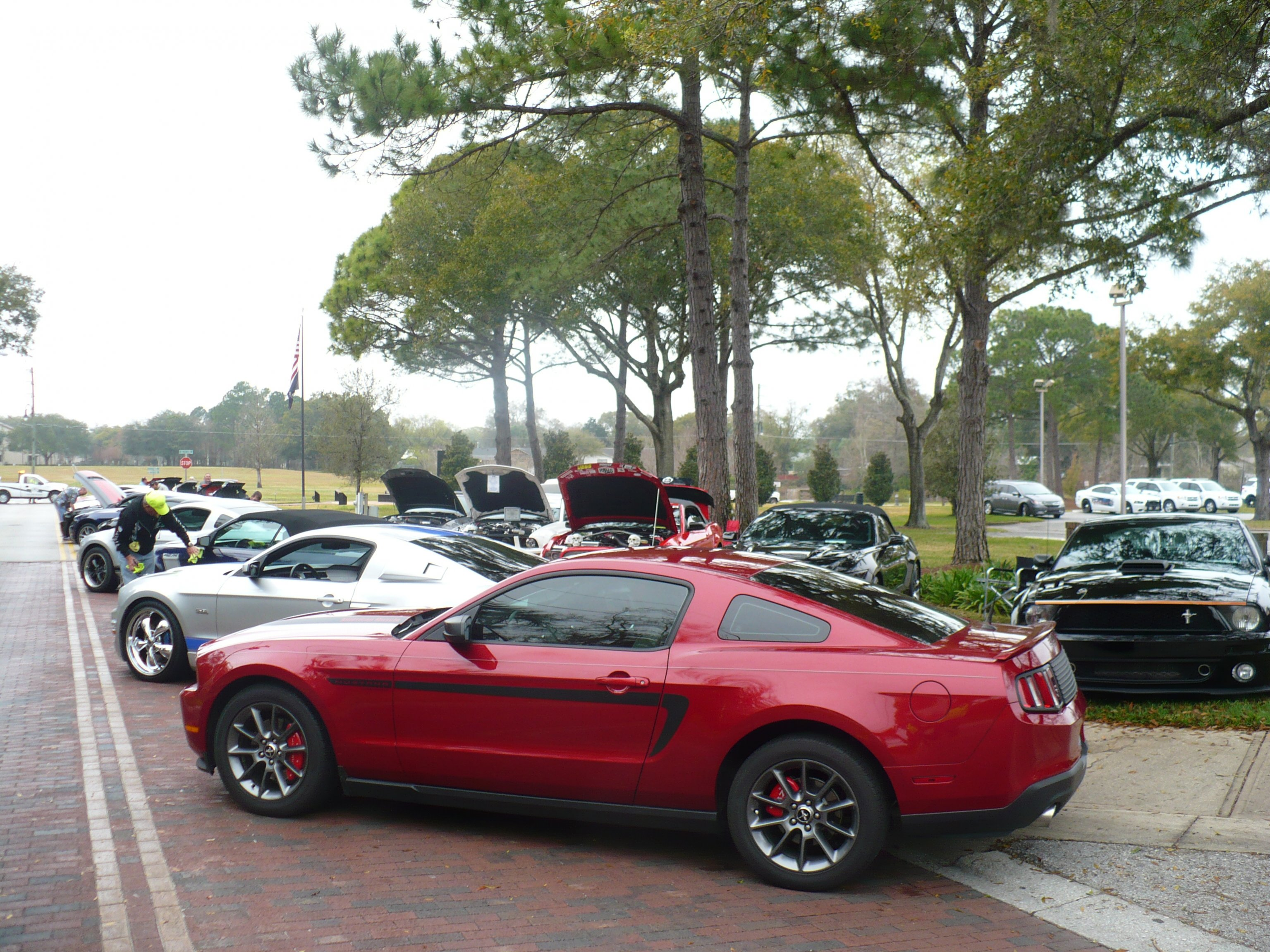 Click image for larger version  Name:Longwood rain Mustang.jpg Views:135 Size:1.15 MB ID:201816