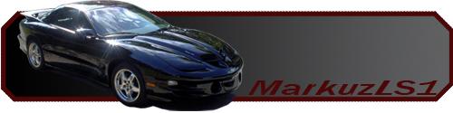 Click image for larger version  Name:markuzls1.jpg Views:81 Size:63.1 KB ID:12717