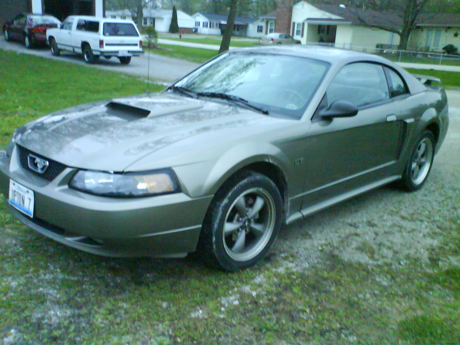 Click image for larger version  Name:Mustang 004.jpg Views:88 Size:272.8 KB ID:20511