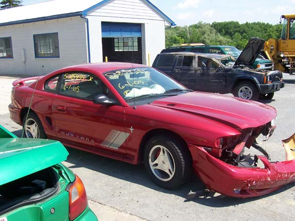 Click image for larger version  Name:Mustang 007.jpg Views:100 Size:64.1 KB ID:9400