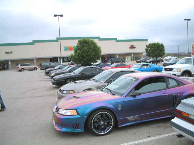 Click image for larger version  Name:mustang 2.jpg Views:88 Size:30.5 KB ID:797