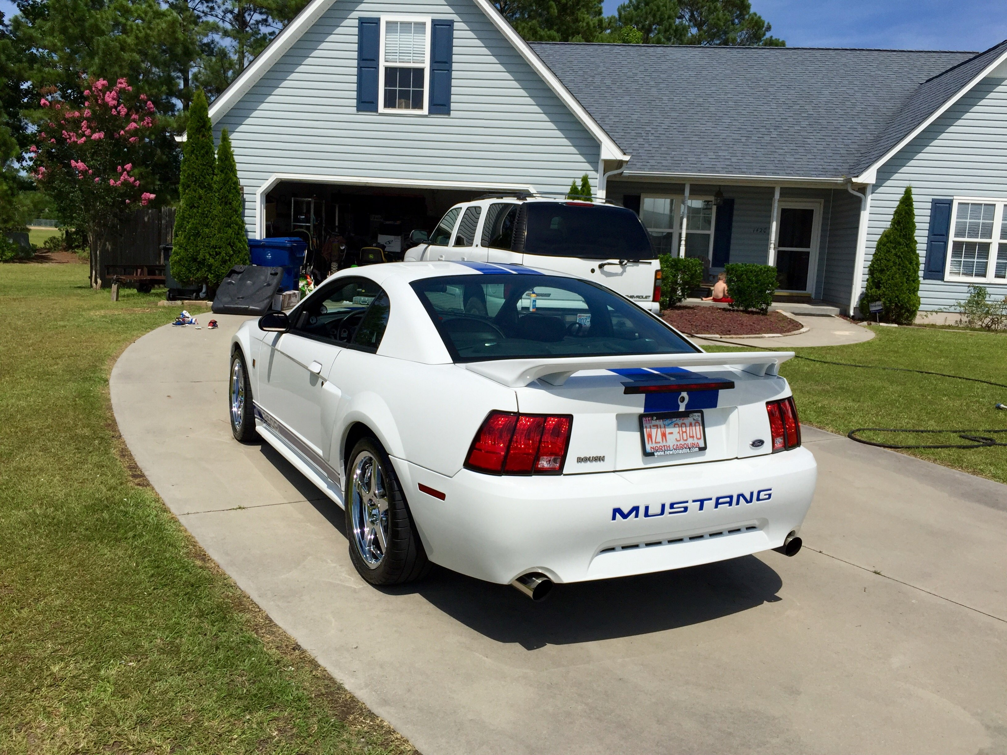 Click image for larger version  Name:Mustang 5.jpg Views:111 Size:1.43 MB ID:205821