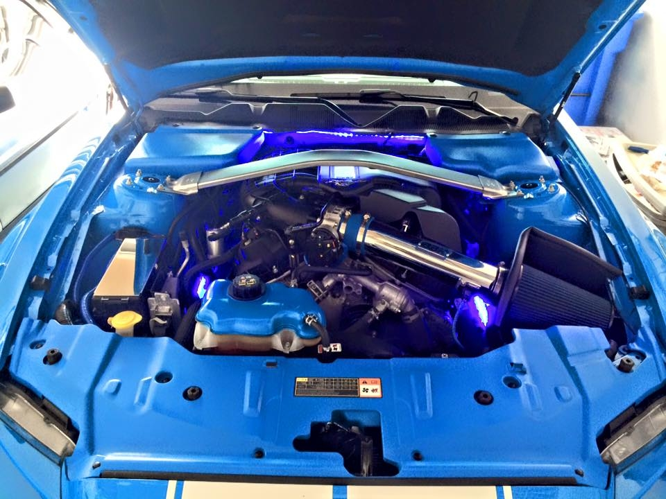 Click image for larger version  Name:Mustang Engine.JPG Views:79 Size:355.4 KB ID:184491