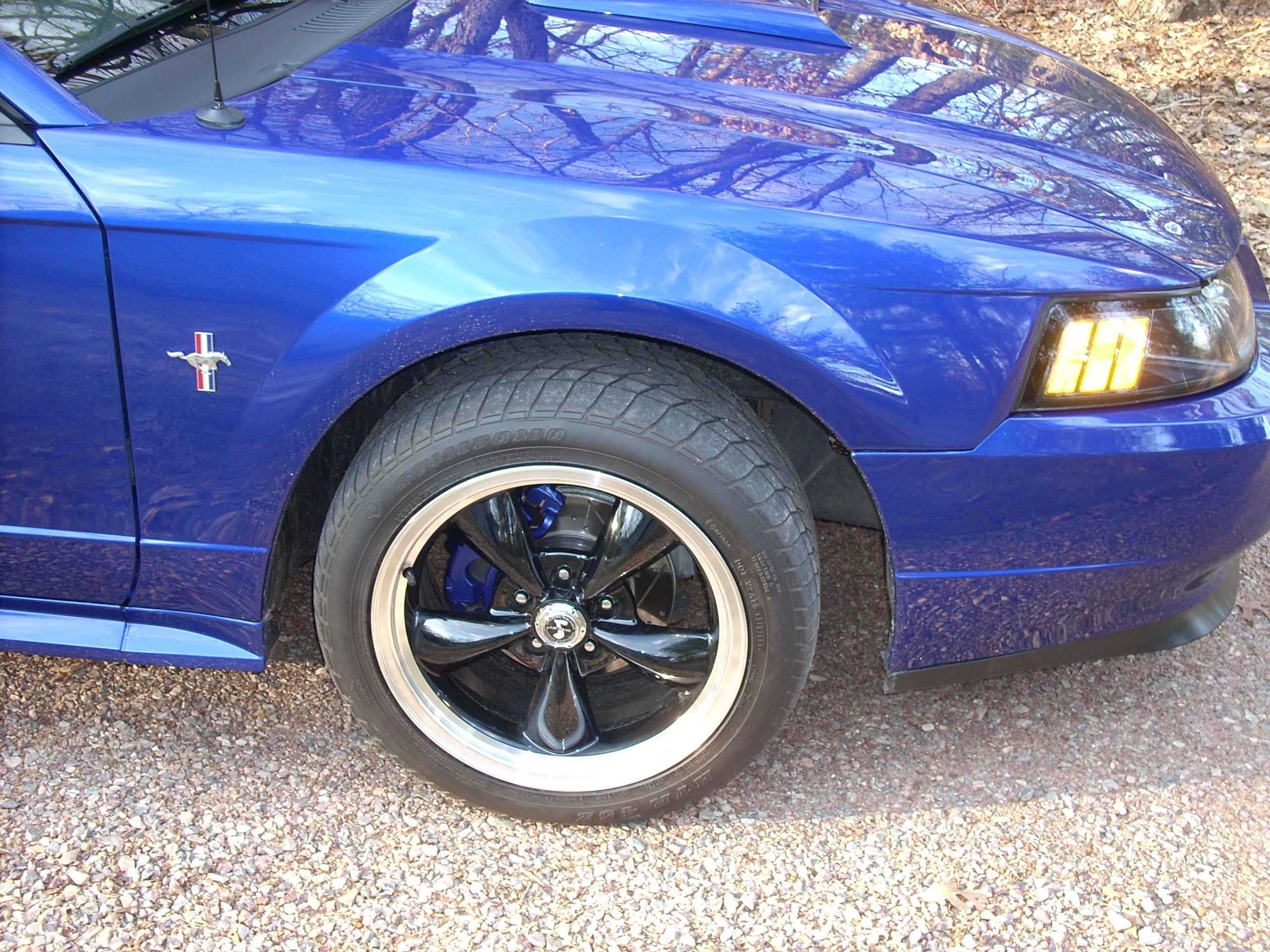 Click image for larger version  Name:Mustang Fender.jpg Views:2719 Size:1.23 MB ID:21539