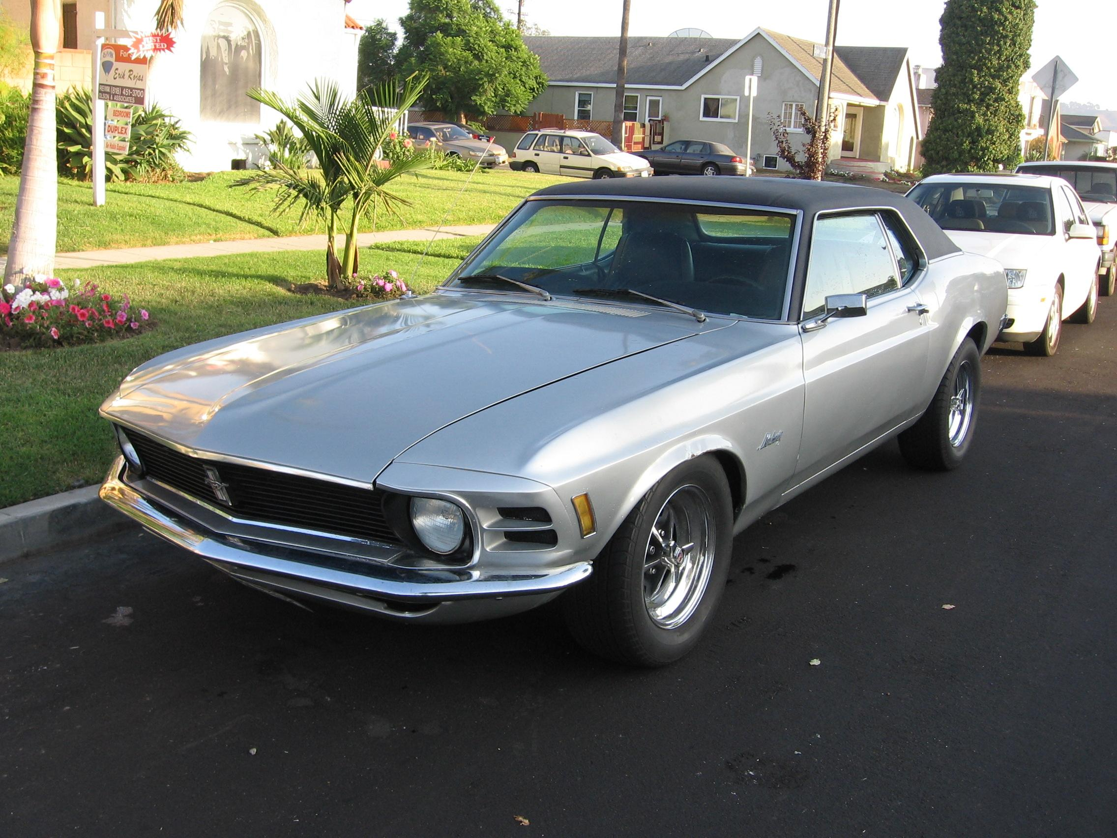 Click image for larger version  Name:mustang front.JPG Views:75 Size:485.8 KB ID:21581