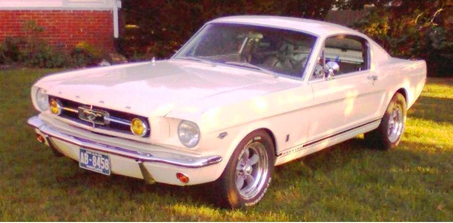 Click image for larger version  Name:Mustang in yard.jpg Views:266 Size:60.0 KB ID:22049