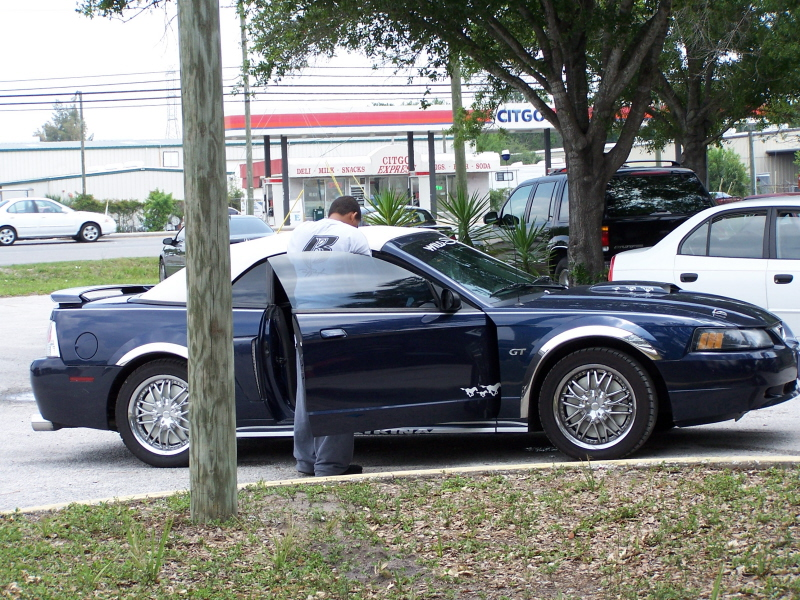 Click image for larger version  Name:mustang.jpg Views:456 Size:552.0 KB ID:13533