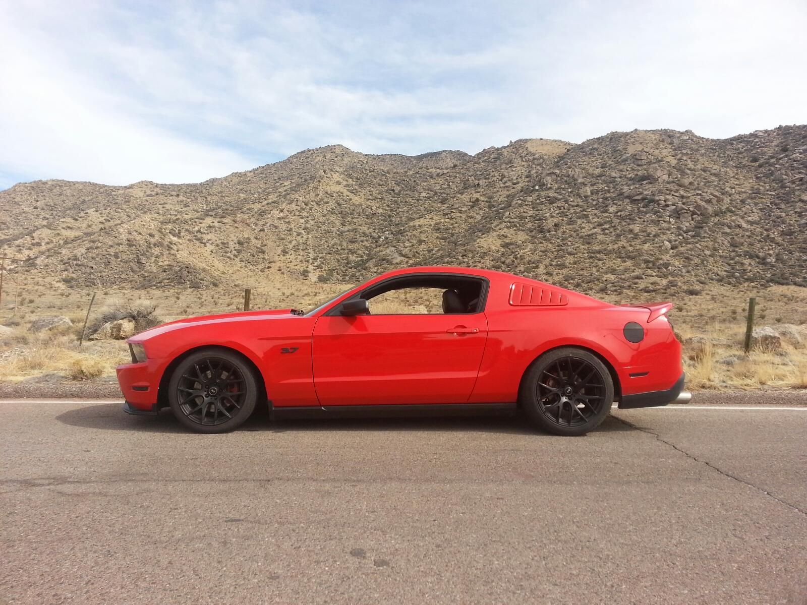 Click image for larger version  Name:mustang.jpg Views:4940 Size:295.6 KB ID:157434