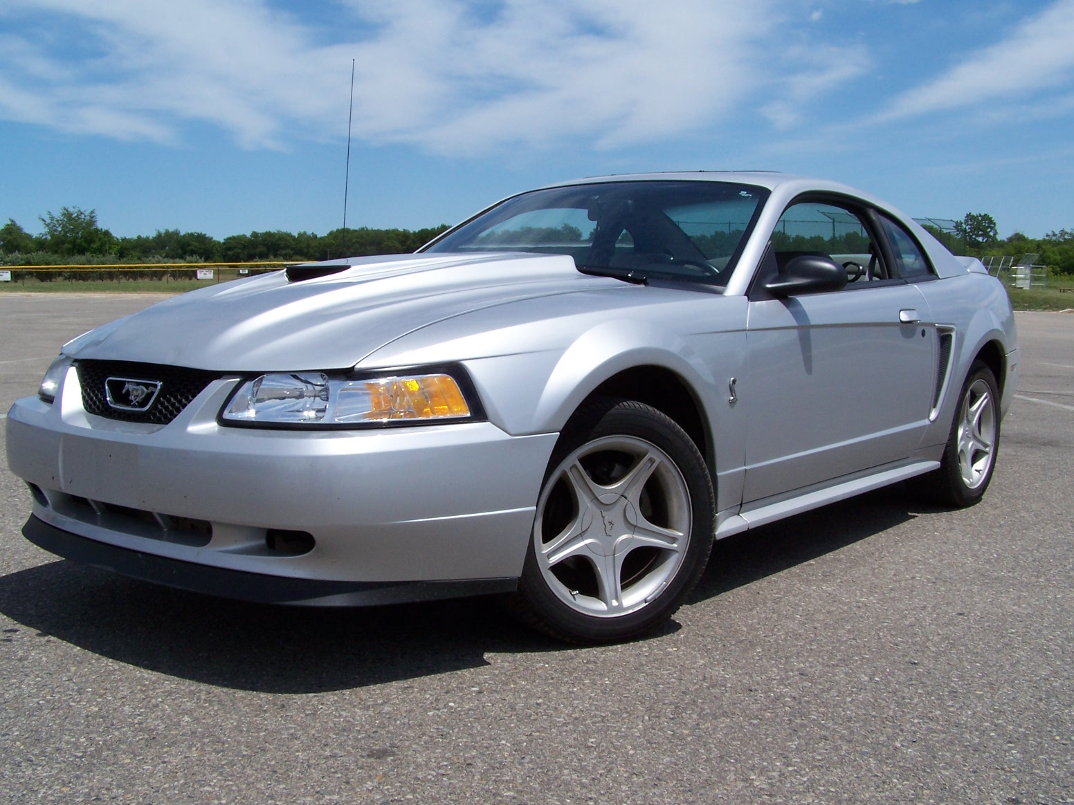 Click image for larger version  Name:mustang.jpg Views:464 Size:461.4 KB ID:16329